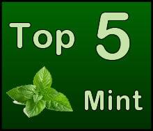 Top 5 Mint Shisha Flavors