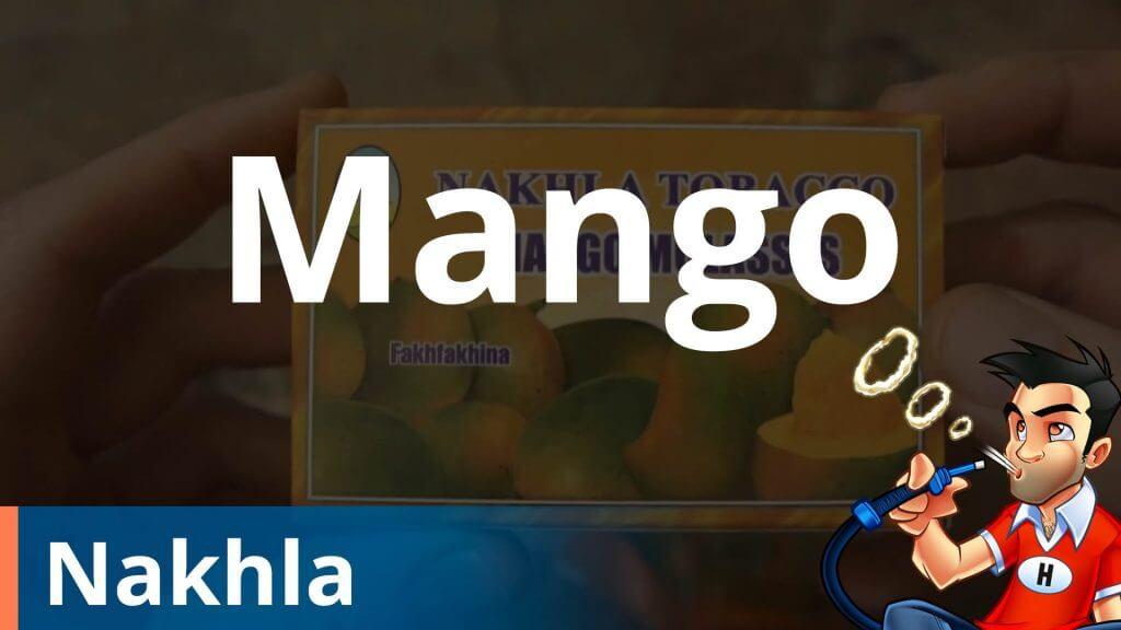 Nakhla Mango Shisha Review