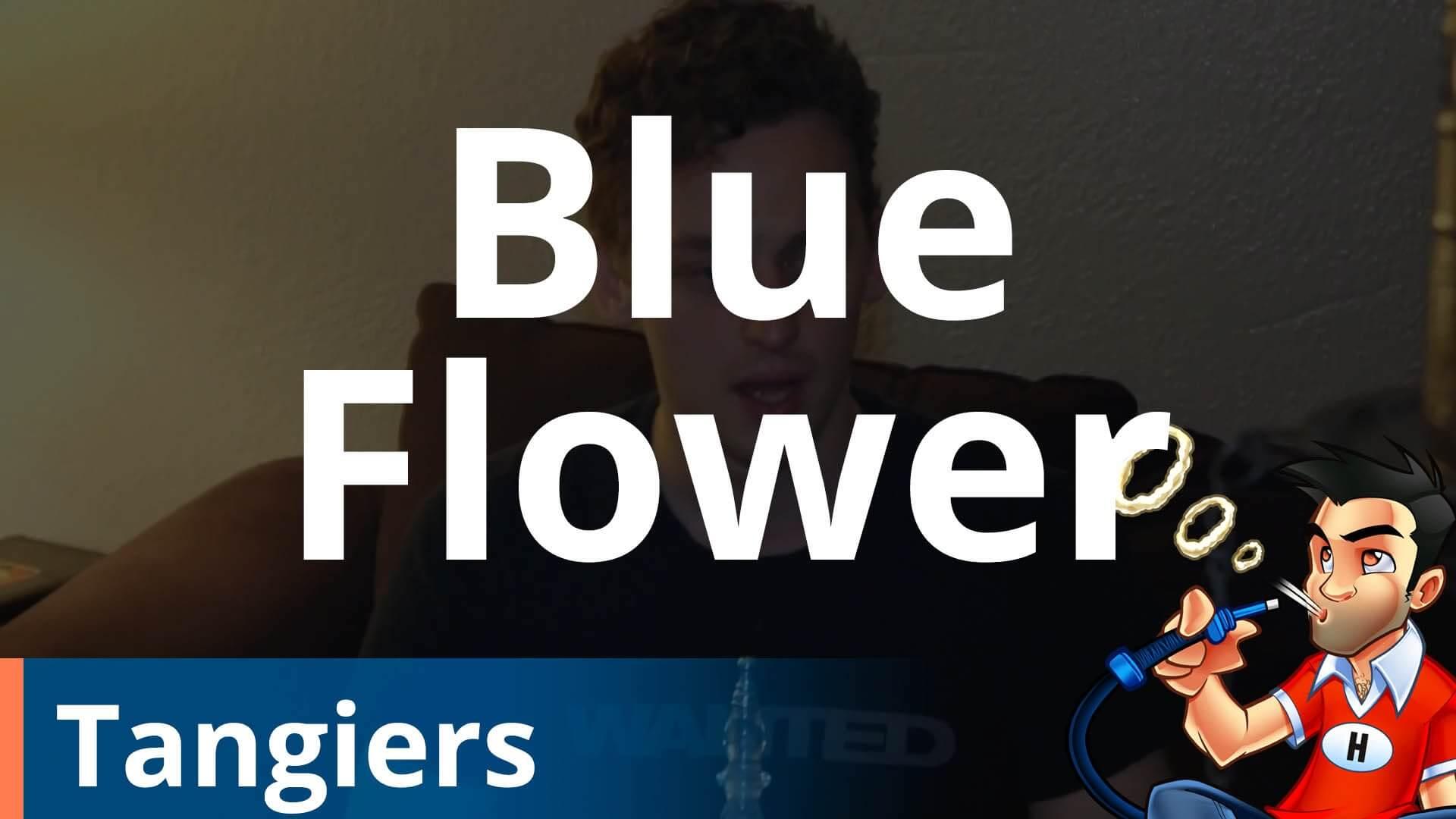 Tangiers Blue Flower Shisha